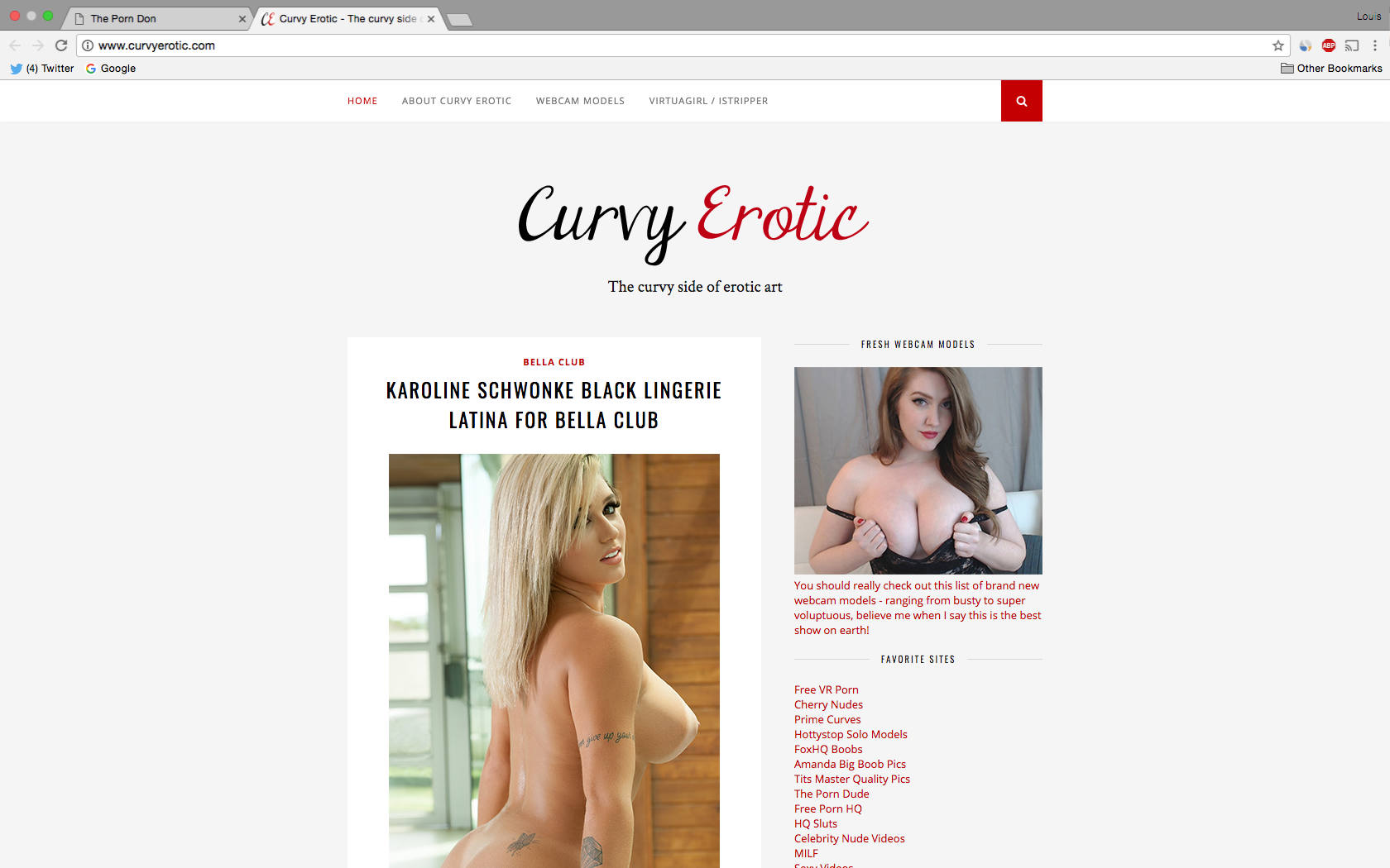 CurvyErotic